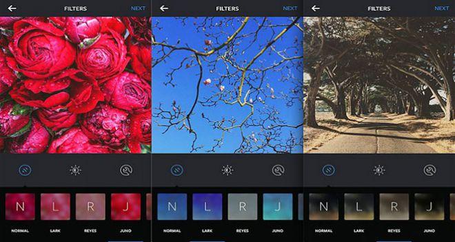 filtre.jpg